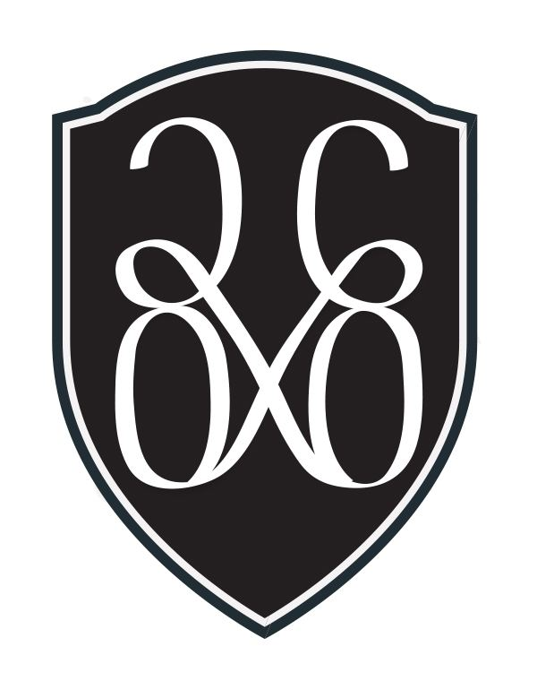 20 x 60 Logo