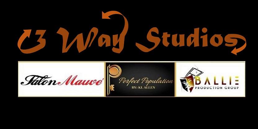 3WayStudios Logo