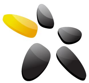 4u-sas Logo
