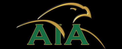 American Investors Association Logo