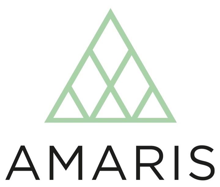 Amaris Group Logo