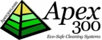 Apex 300 Group Logo