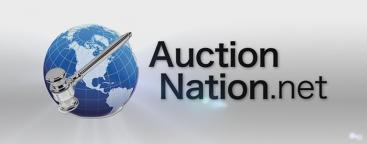 Auction Nation LLC Logo