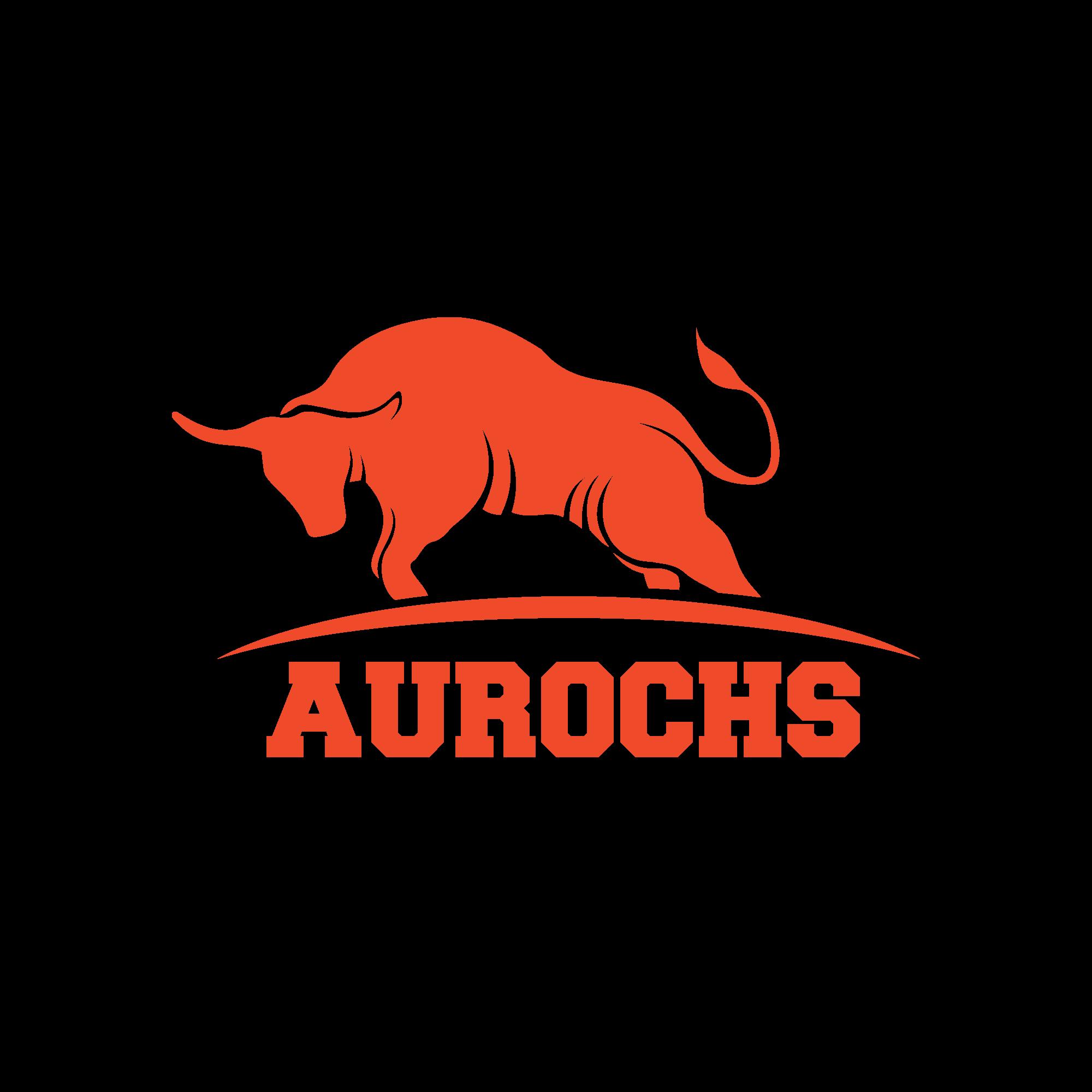 Aurochs Solutions Logo