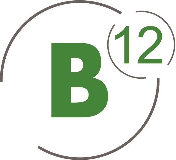 B12Consulting Logo