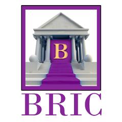 BRIC LLC Logo