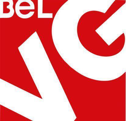 BelVG_LLC Logo