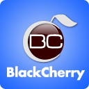 BlackCherry Digital Media Inc. Logo