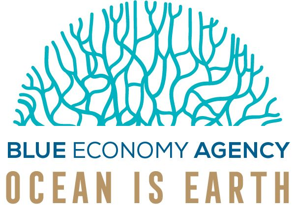 BlueEconomyAgency Logo