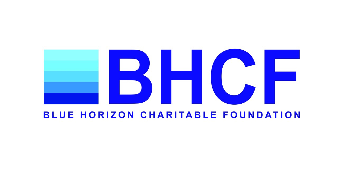 Blue Horizon International Logo