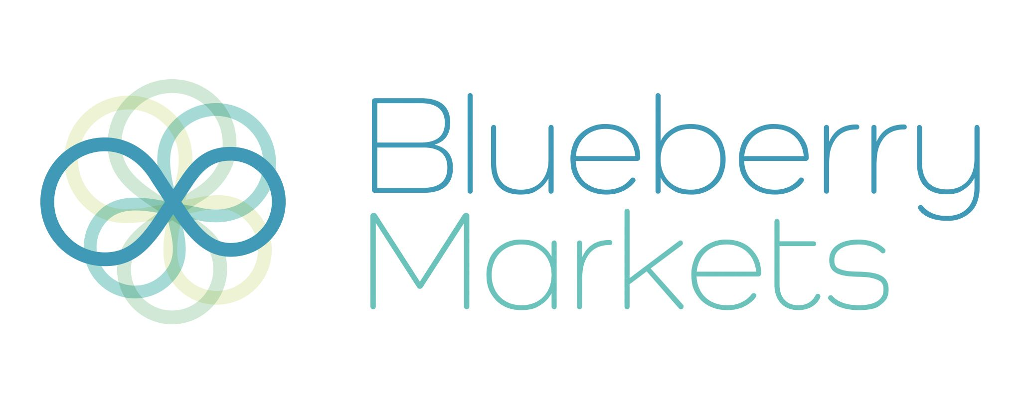 BlueberryMarkets Logo