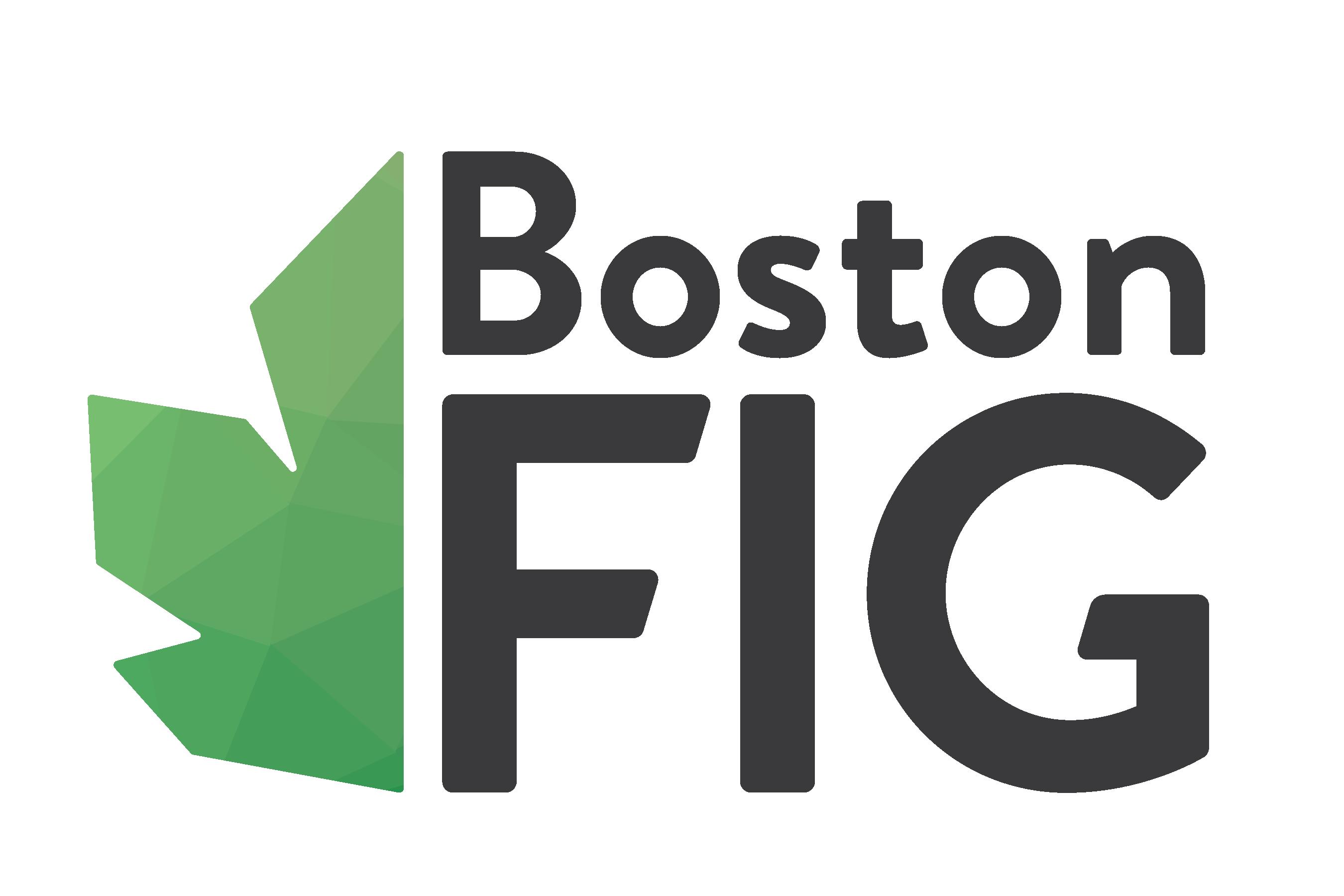 BostonFIG Logo