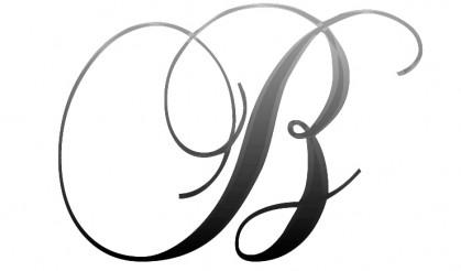 BRANDBITIOUSPR Logo