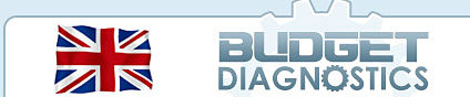 Budget Diagnostics Logo