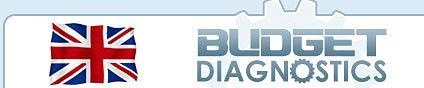 Budget Diagnostics Logo