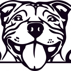 Bully Diesel and Automotive Repair Logo