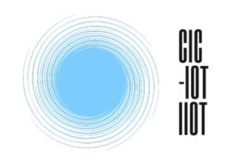 CICIOT Logo