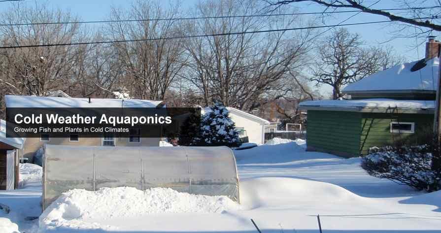 Cold Weather Aquaponics Logo