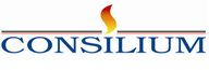 Consilium Software Inc (Pte.) ltd. Logo
