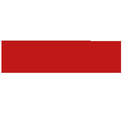 DanielCamer Logo
