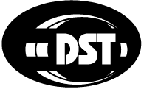 Data Solutions & Technology Incorporated Logo