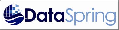 DataSpring, Inc. Logo