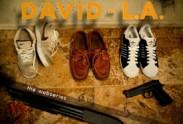 David In LA Logo