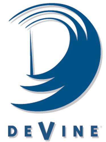 DeVine Consulting, Inc. Logo