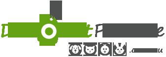 DiscountPetCare Logo