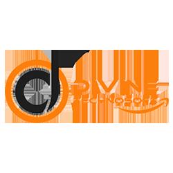 Divinetechnosoft Logo