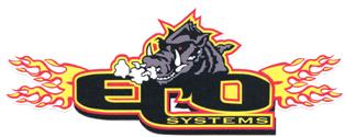 ECO Fuel Systems, LLC Logo