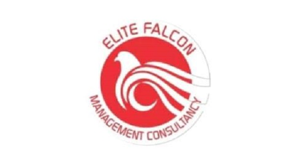 Elite-Falcon Logo
