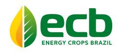 Energy Crops Brazil Logo