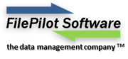 FilePilot Software Inc. Logo