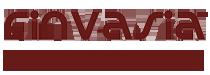 Finvasia India Pvt. Ltd. Logo