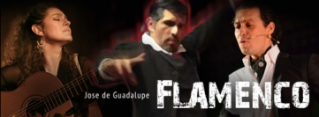 Flamenco Arts Logo