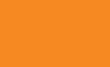Gym Star Apparel Logo