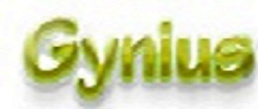 Gynius Search Engine Rewards Network Logo