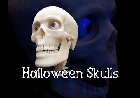 HalloweenSkulls Logo