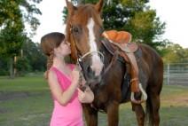 Haven Horse Ranch Logo
