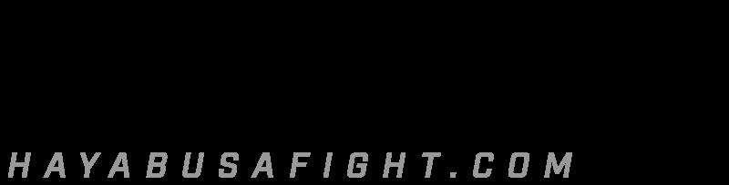 Hayabusa Fightwear, Inc. Logo