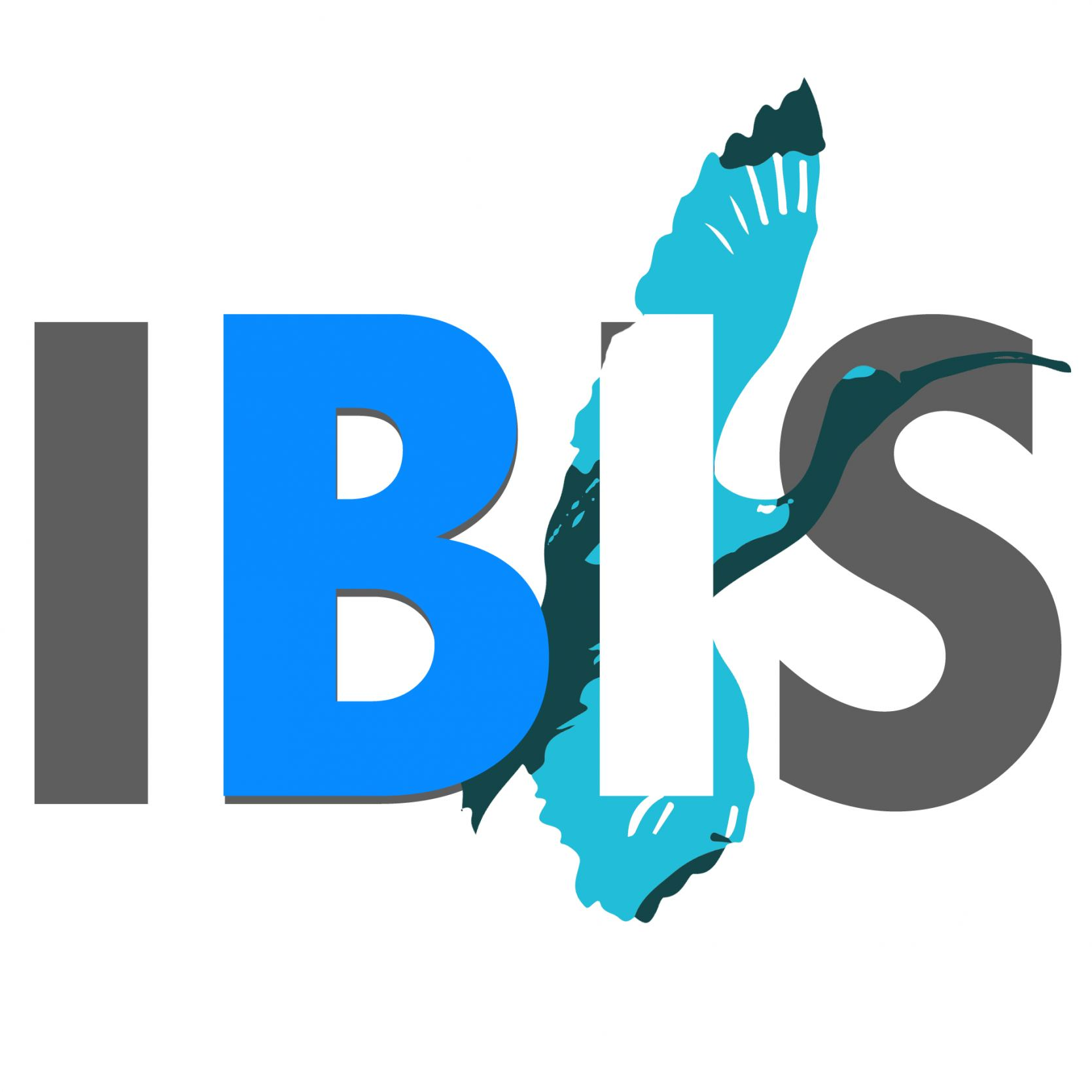 IBIS Solutions, Inc. Logo