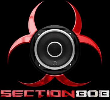 Section 808 Logo