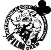 InTroubleZone Logo