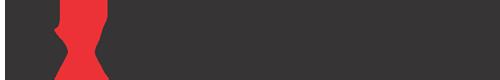 domex business information pvt ltd Logo