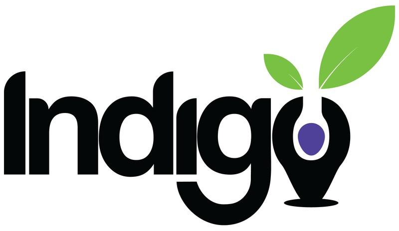Indigofoundation Logo