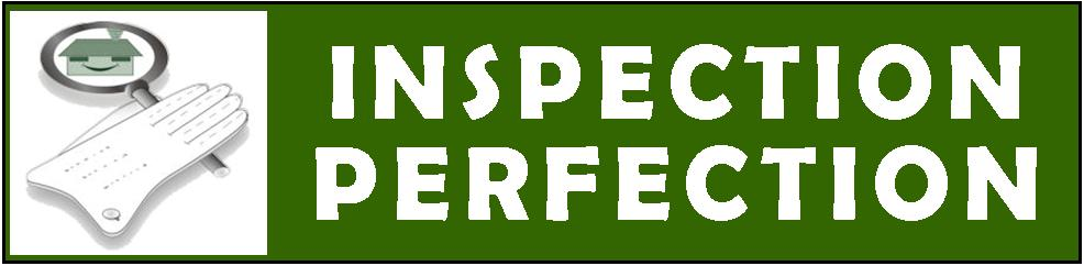 Inspection Perfection Logo