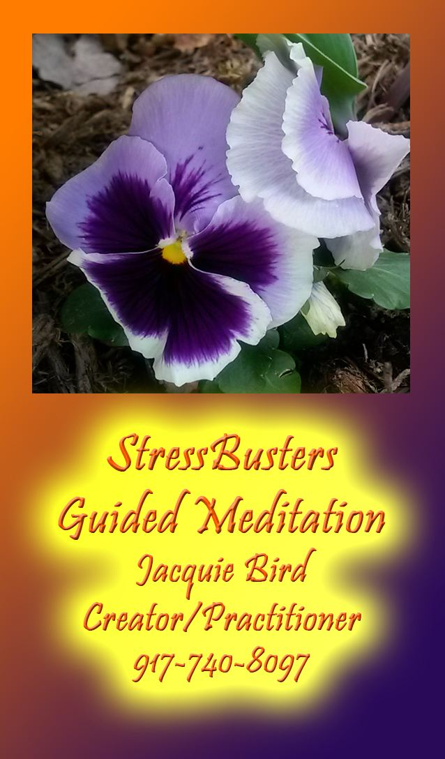 StressBusters Guided Meditation Logo