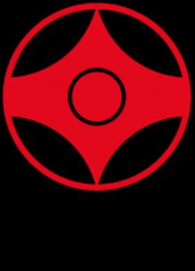 KYOKUSHIN USA Logo