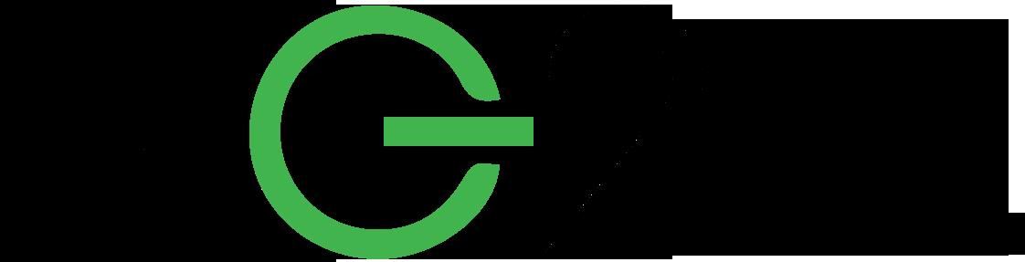 NG2 Logo